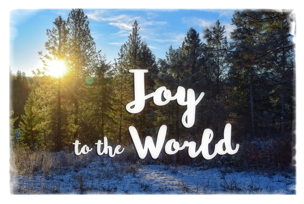 The Great Joy of the Wise Men